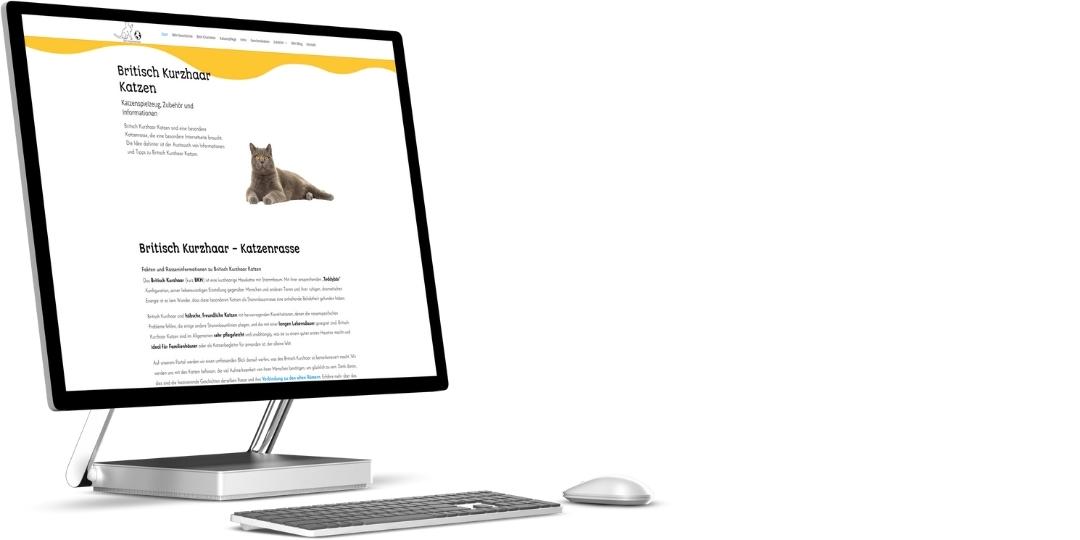 Webdesign und SEO Wordpress